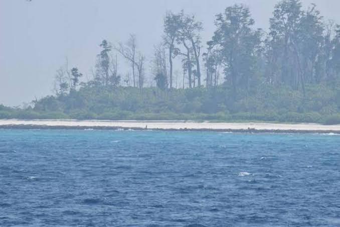 NS Island 2